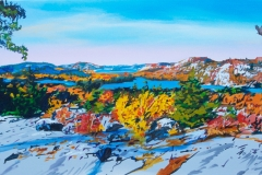 Home of the Hawk, 15x30 (Sherway)
